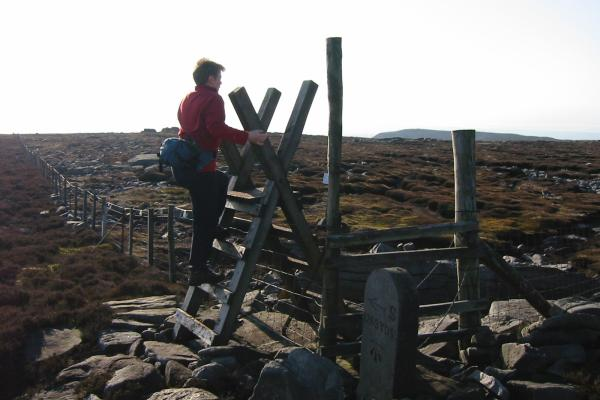 Climbing the stile back into the access area on Grit Fell, Clougha Pike in the distance