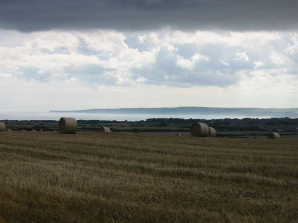 Straw bales with Flamborough Head in the distance