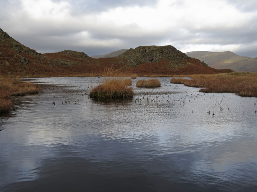 One of the many unnamed tarns on Loughrigg