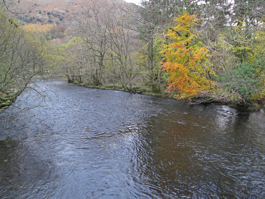 The River Rothay