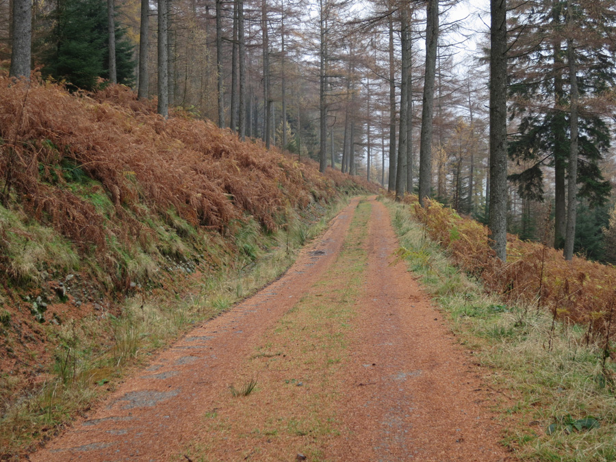 On the permissive path back to Dunmail Raise