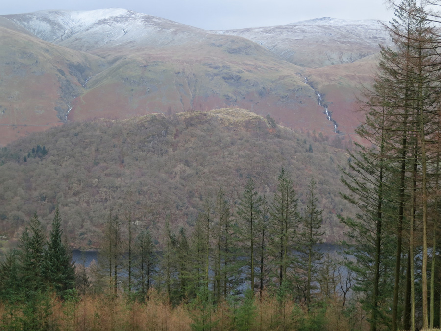 Looking over Great How to Stybarrow Dodd and Raise
