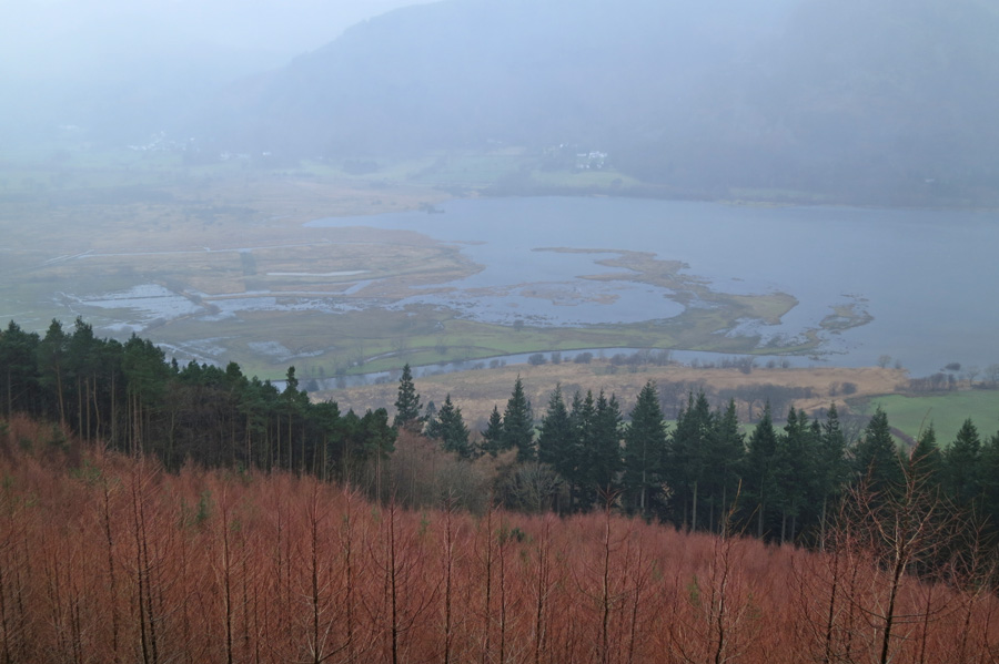 The head of Bassenthwaite Lake in the rain