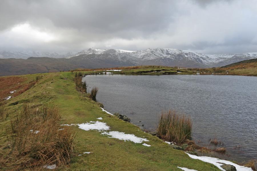 Alcock Tarn's dam