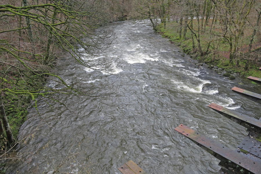 Lots of water in the River Greta