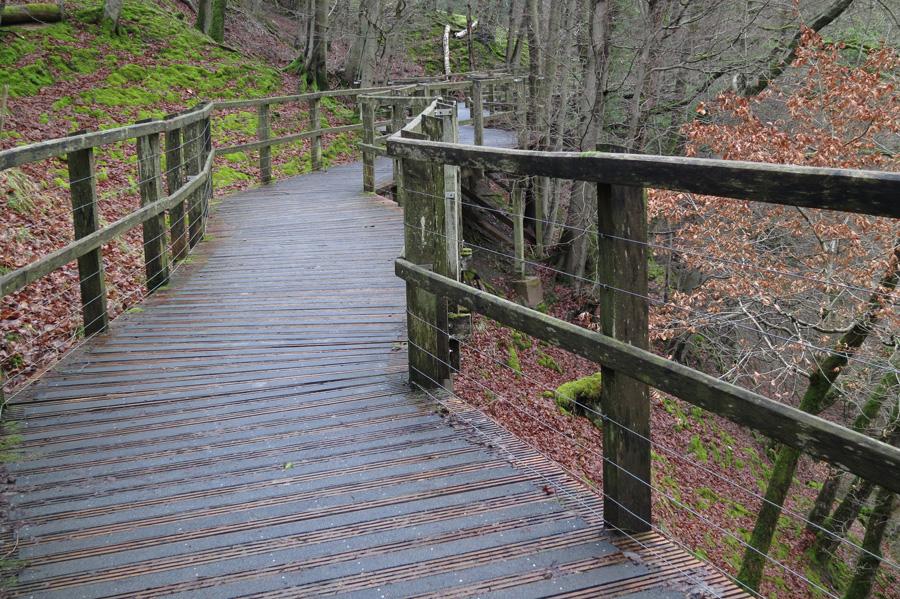 The board walk above the River Greta