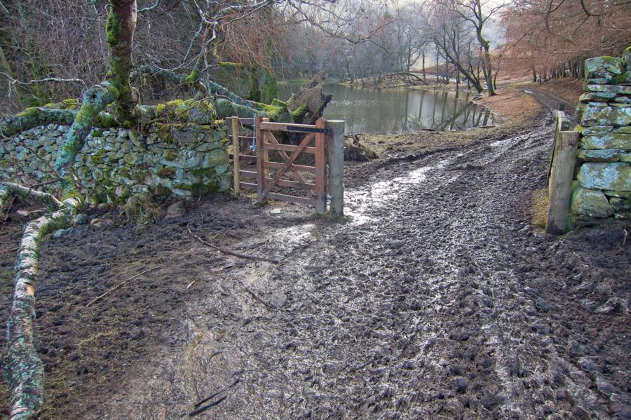 Lots of mud here!