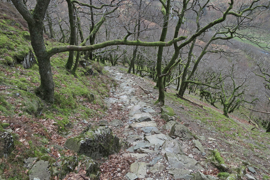 The steep pitched path up out of Stonethwaite up to Lingy End