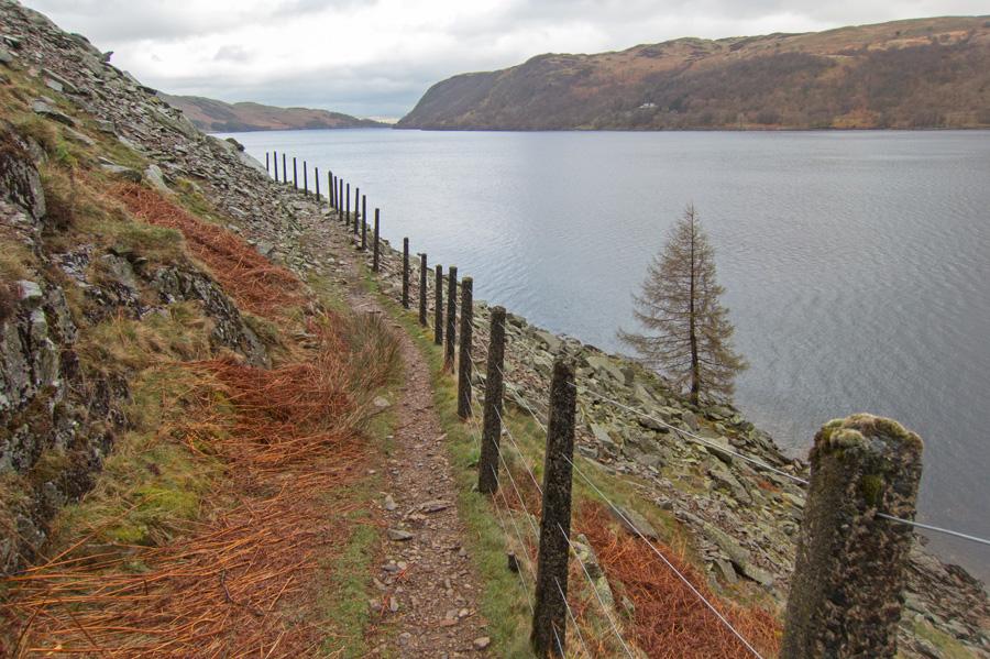 On the lake shore path
