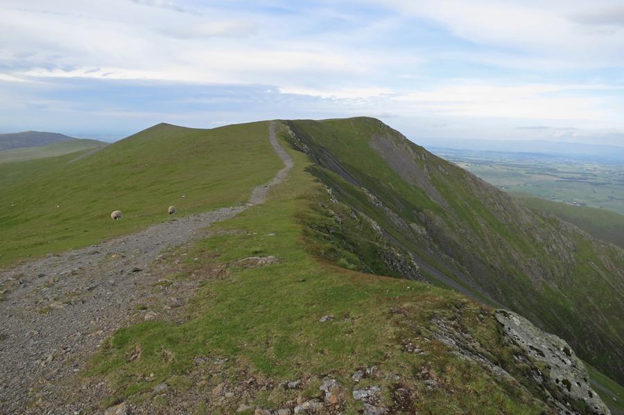 Hallsfell Top, Blencathra's summit from Gategill Fell Top