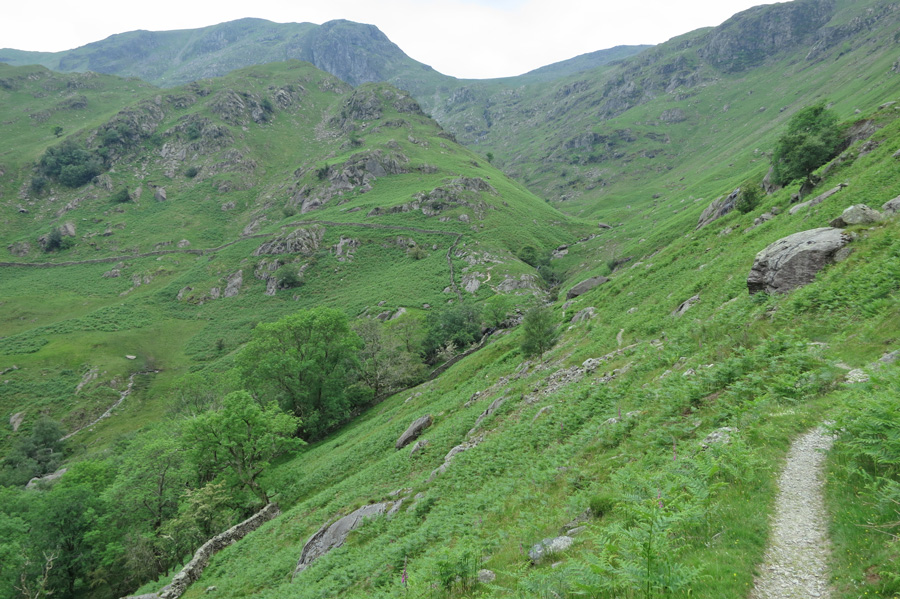 Looking back towards Dove Crag
