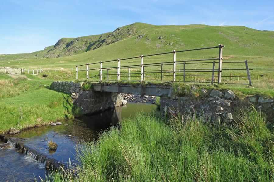 Mariel Bridge