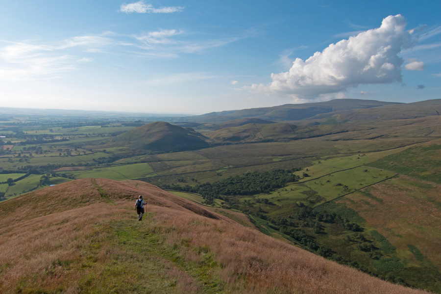 Descending Dufton Pike's north ridge with Knock Pike ahead