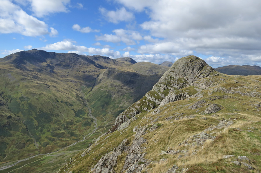 Looking back to Pike O'Stickle from Loft Crag