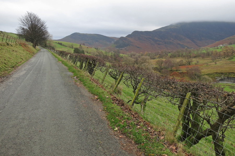 On the road back to Rigg Beck