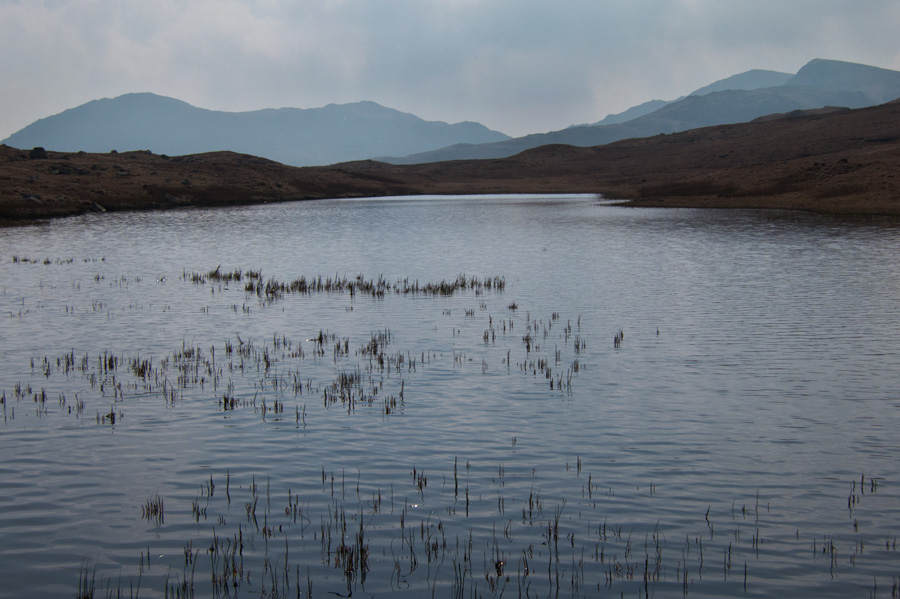 Looking south to the Coniston fells from Red Tarn