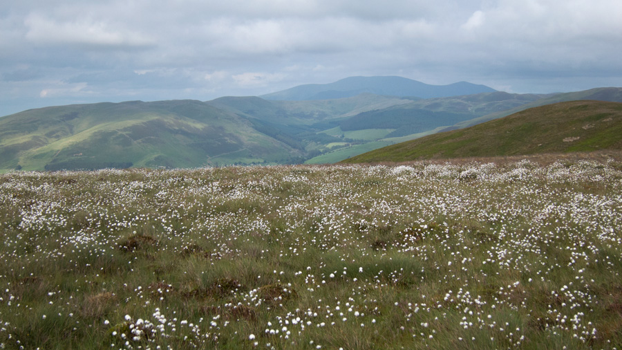 Looking across to Skiddaw
