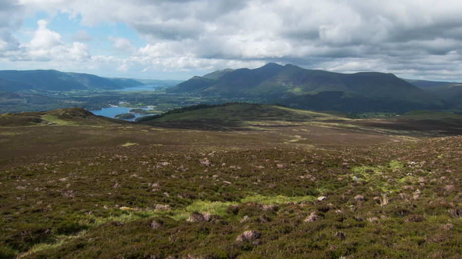 Looking north to Skiddaw