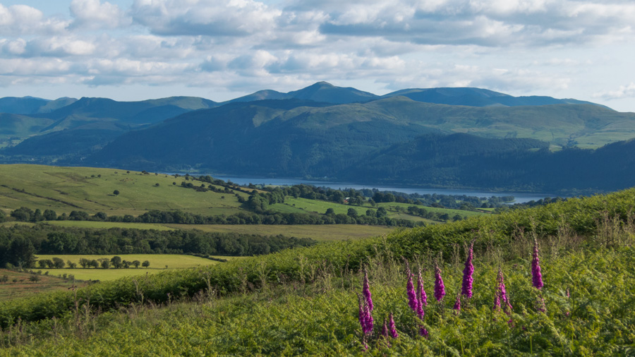 Looking over Bassenthwaite Lake to the Whinlatter/Lord's Seat Fells with Grisedale Pike behind