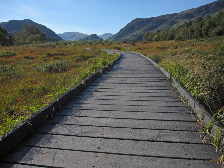 Looking back south towards Castle Crag from the boardwalk