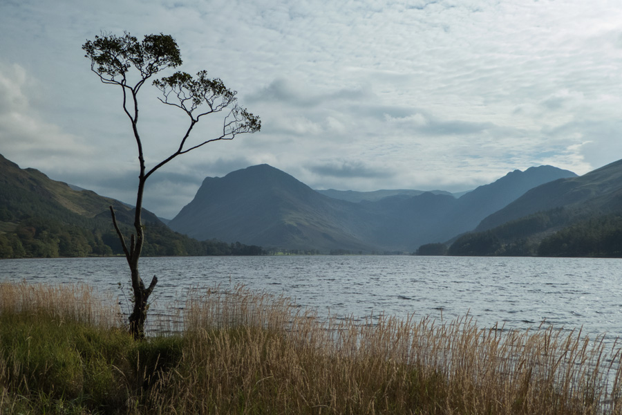 Looking up the lake to Fleetwith Pike