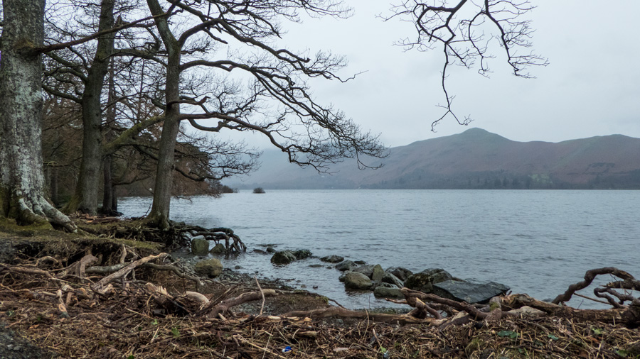 Down on the shore of Derwent Water