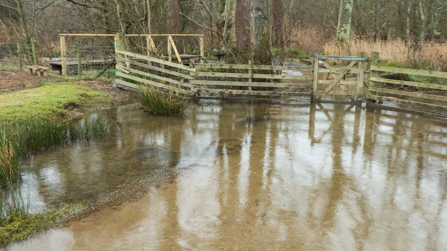 But the bridge has been moved down to by the gate out of the woodland