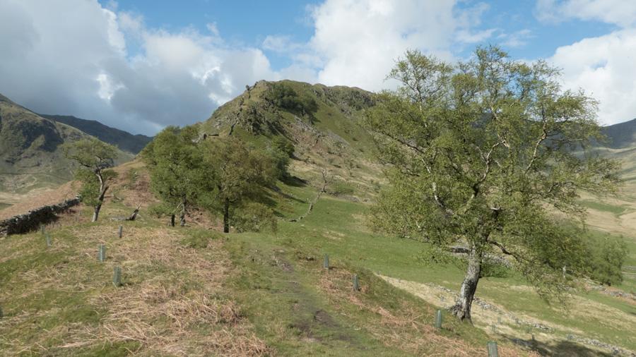Swine Crag