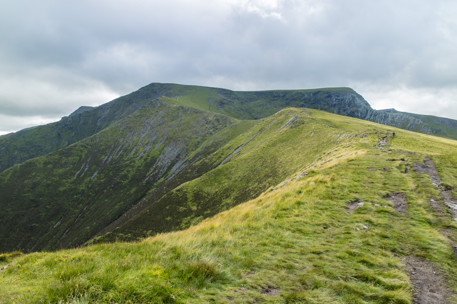Scales Fell