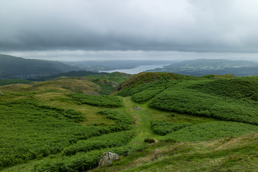 Looking towards Windermere from Loughrigg's summit