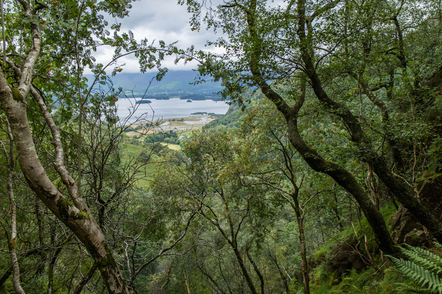 A glimpse of Derwent Water from the ascent of Grange Fell