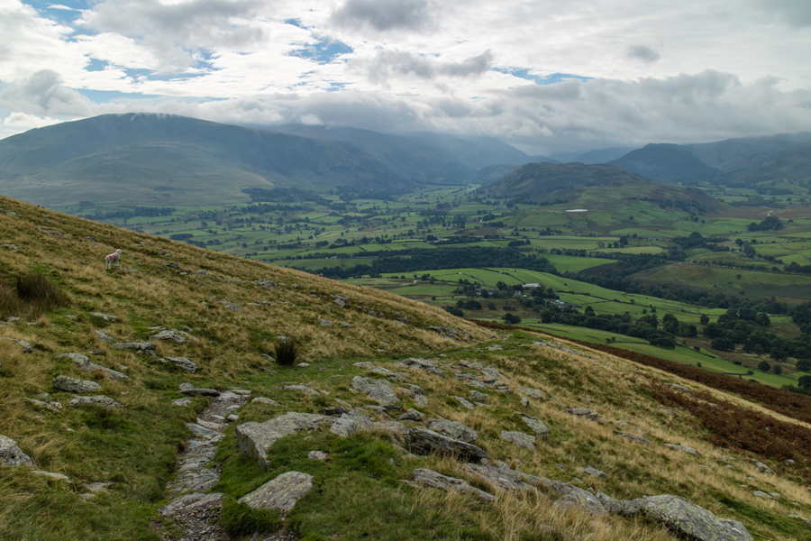 Looking south to the Helvellyn range and St John's in the Vale