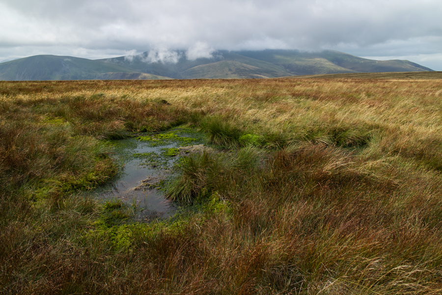Looking across to the Skiddaw fells