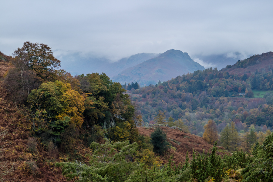 Towards Helm Crag