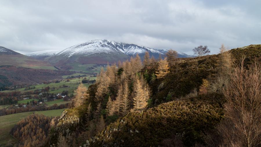 Towards Blencathra from Walla Crag