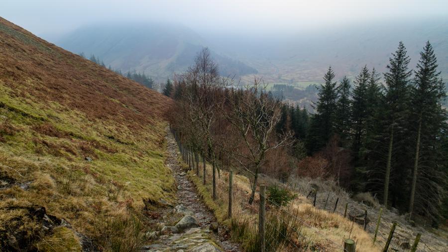 Murky low down, looking towards Steel Fell