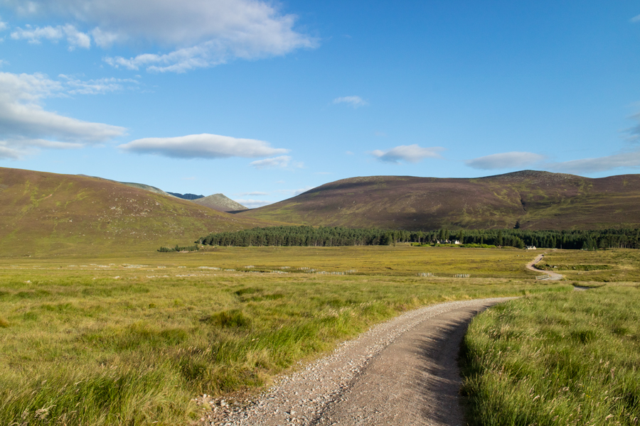 Heading towards Allt-na-giubhsaich, the pointed peak is Meikle Pap with top of the cliffs of Lochnagar visible behind