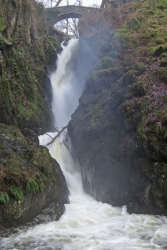 Aira Force from below (6 Feb 2014)