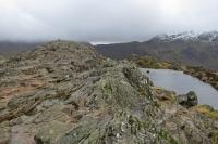 Haystacks summit ridge (9 Feb 2014)