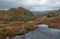 Tarn Crag's summit (30 Dec 2014)